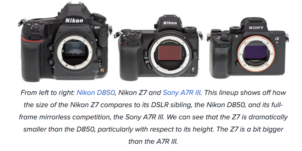 Nikon Z7 Field Test Part I: Nikon takes a good first step into the ...